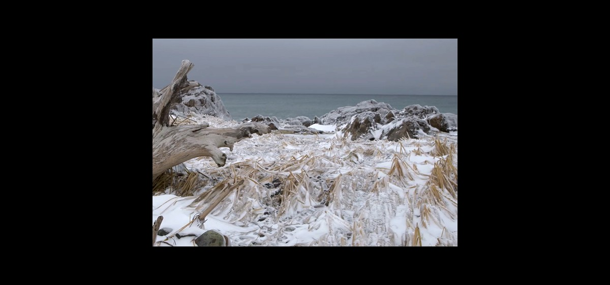Maison de la Nature - St-Pierre et Miquelon